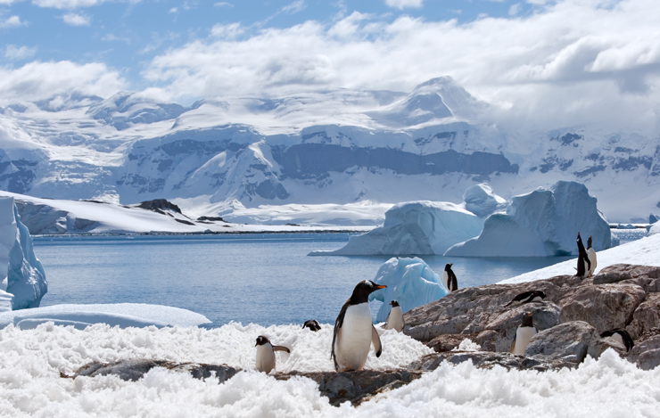 Elcomponent Keeps An Eye On Energy In The Antarctic